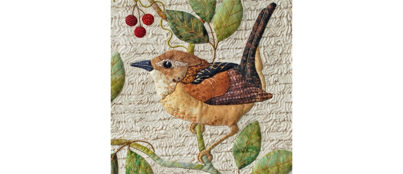 Naturalist's Notebook: The Wren
