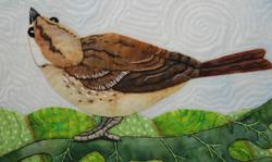 brown_bird_poppy2