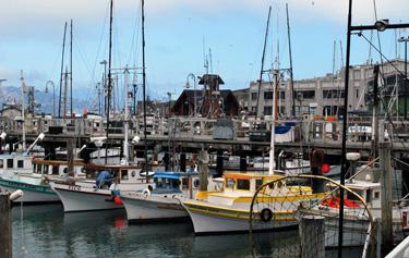 fishermans_wharf_boats_sm