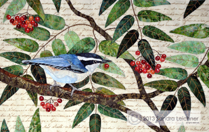 nuthatch_full_final_sm